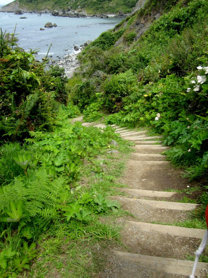 Stairs at Palmer's Point