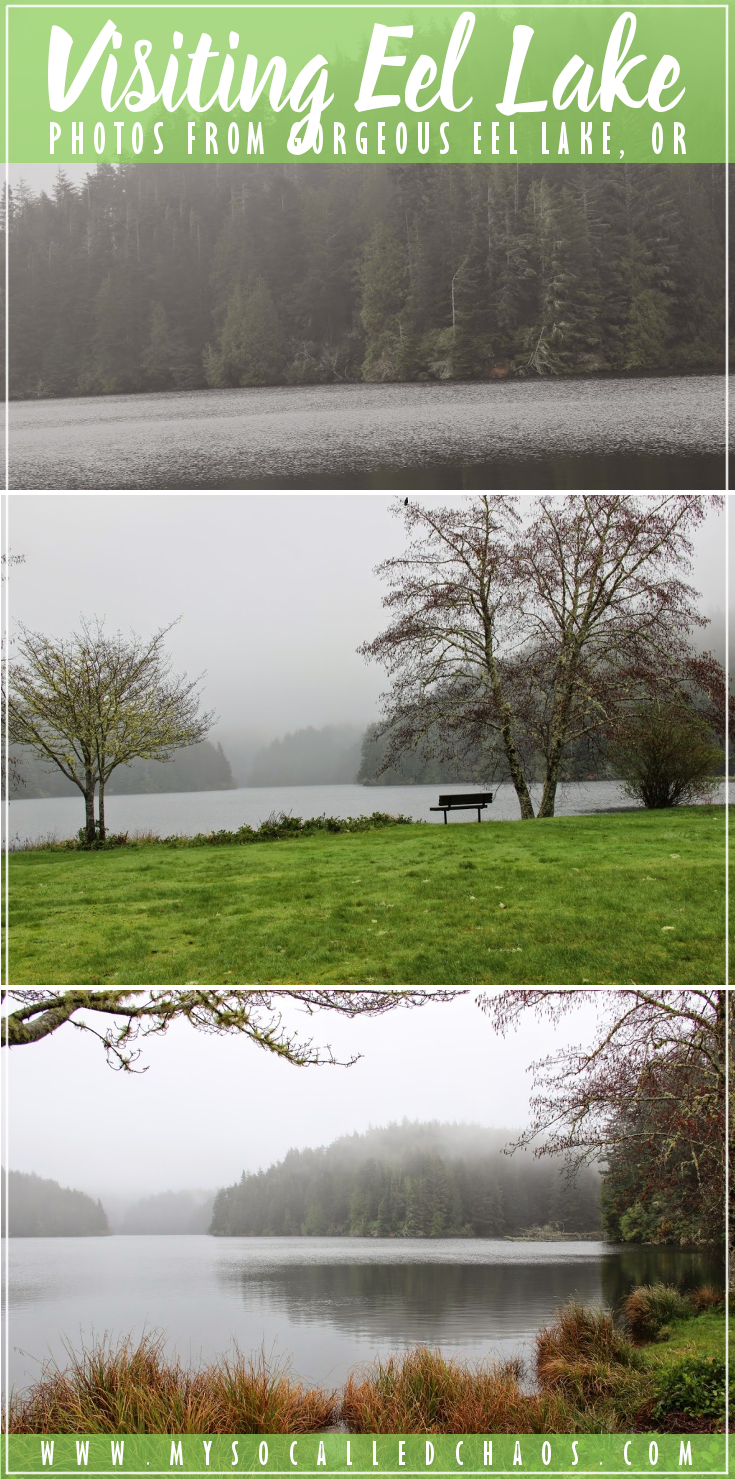 Visiting gorgeous and green Eel Lake, OR