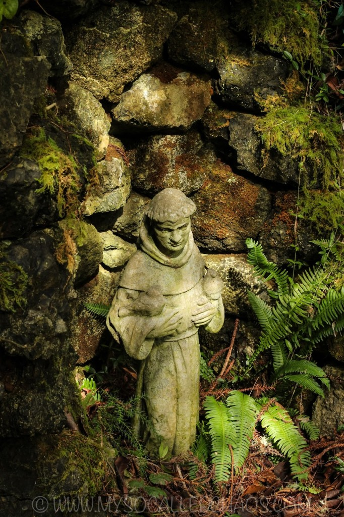 St. Francis Statue in Coos Bay, OR