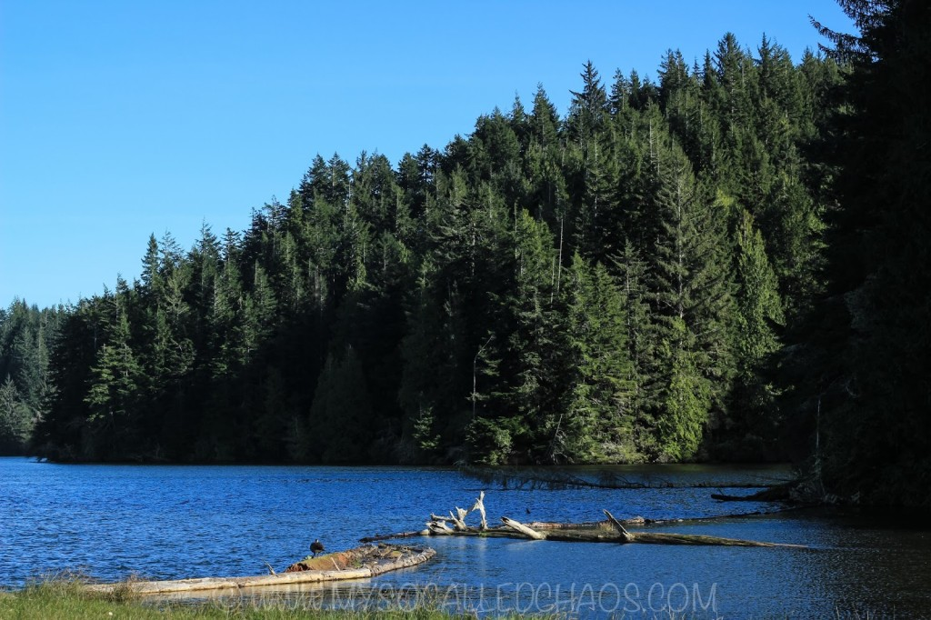 Eel Lake, OR