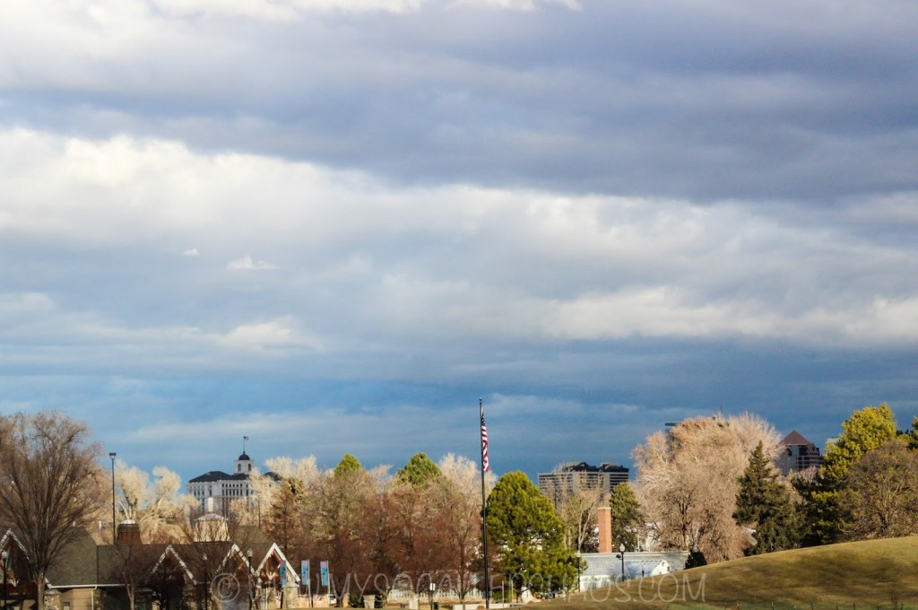 A View of Salt Lake City from Liberty Park