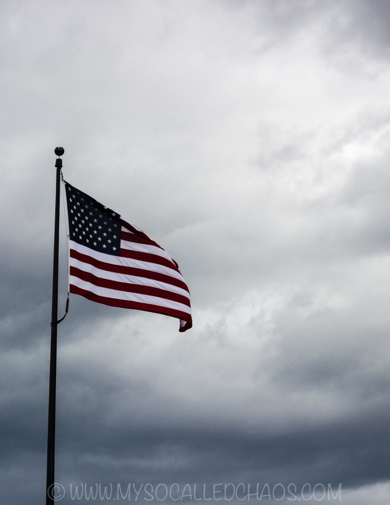 The Flag and Grey Skies at Liberty Park in Salt Lake City, UT