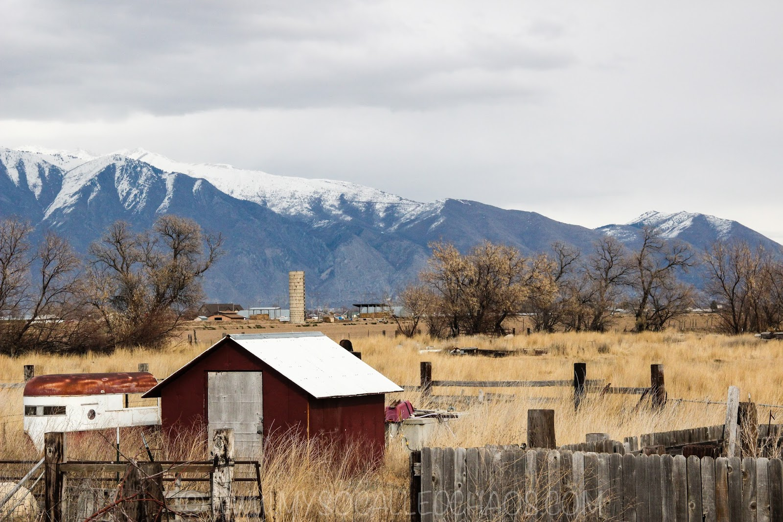 Photography: The Yard Back Home-Lakeshore Utah