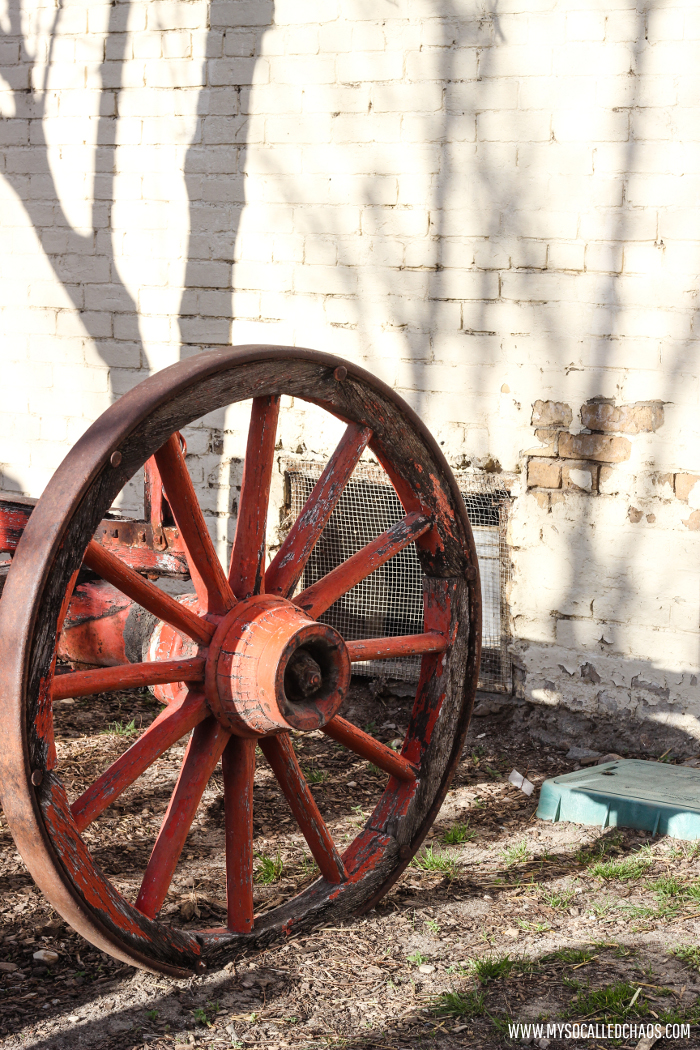 Wagon Wheels at Wheeler Farm