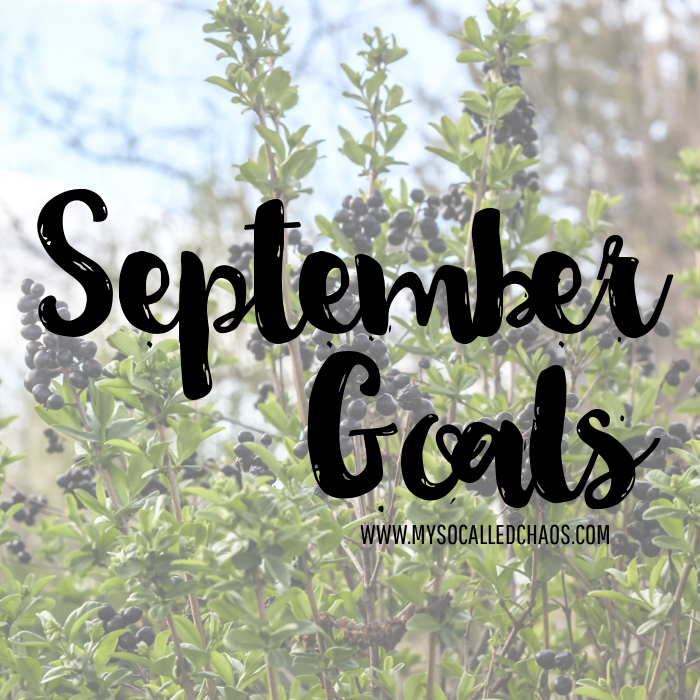 Monthly Goals Linky: September 2015 Goals
