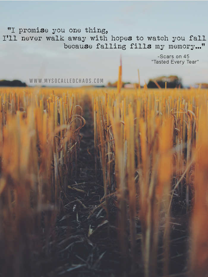 Because Falling Fills My Memory…