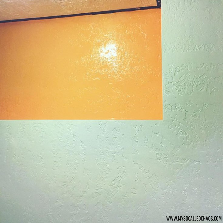 Sherwin Williams Sea Salt and Outgoing Orange