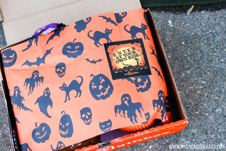 October PetGiftBox