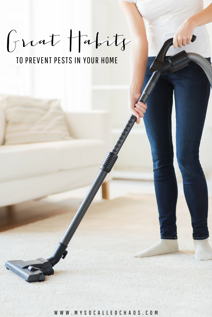 Great Habits to Prevent Pests in Your Home