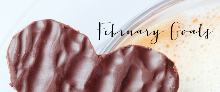The Monthly Goals | February Goals