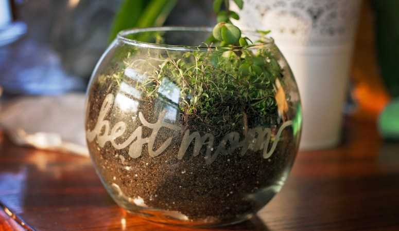 DIY Etched Glass Terrarium