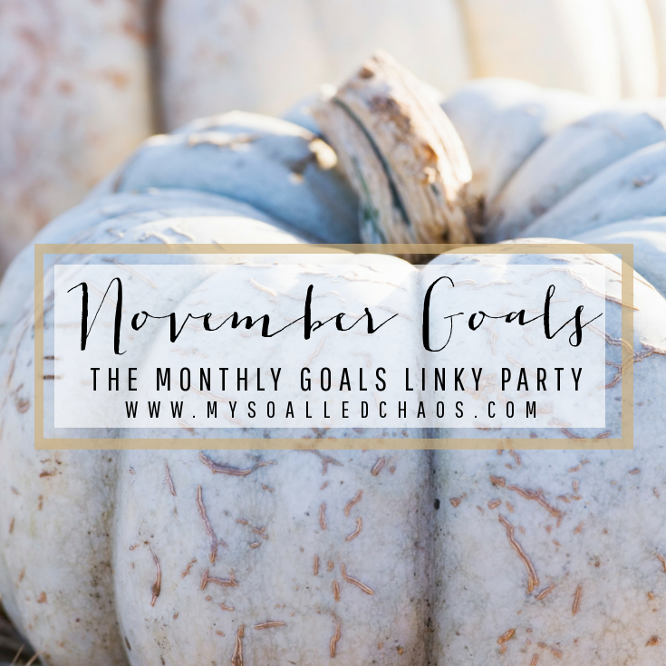 November Goals - The Monthly Goals Linky Party