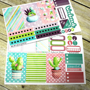 February Favorites: Cacti BIG Happy Planner Planner Stickers via Etsy