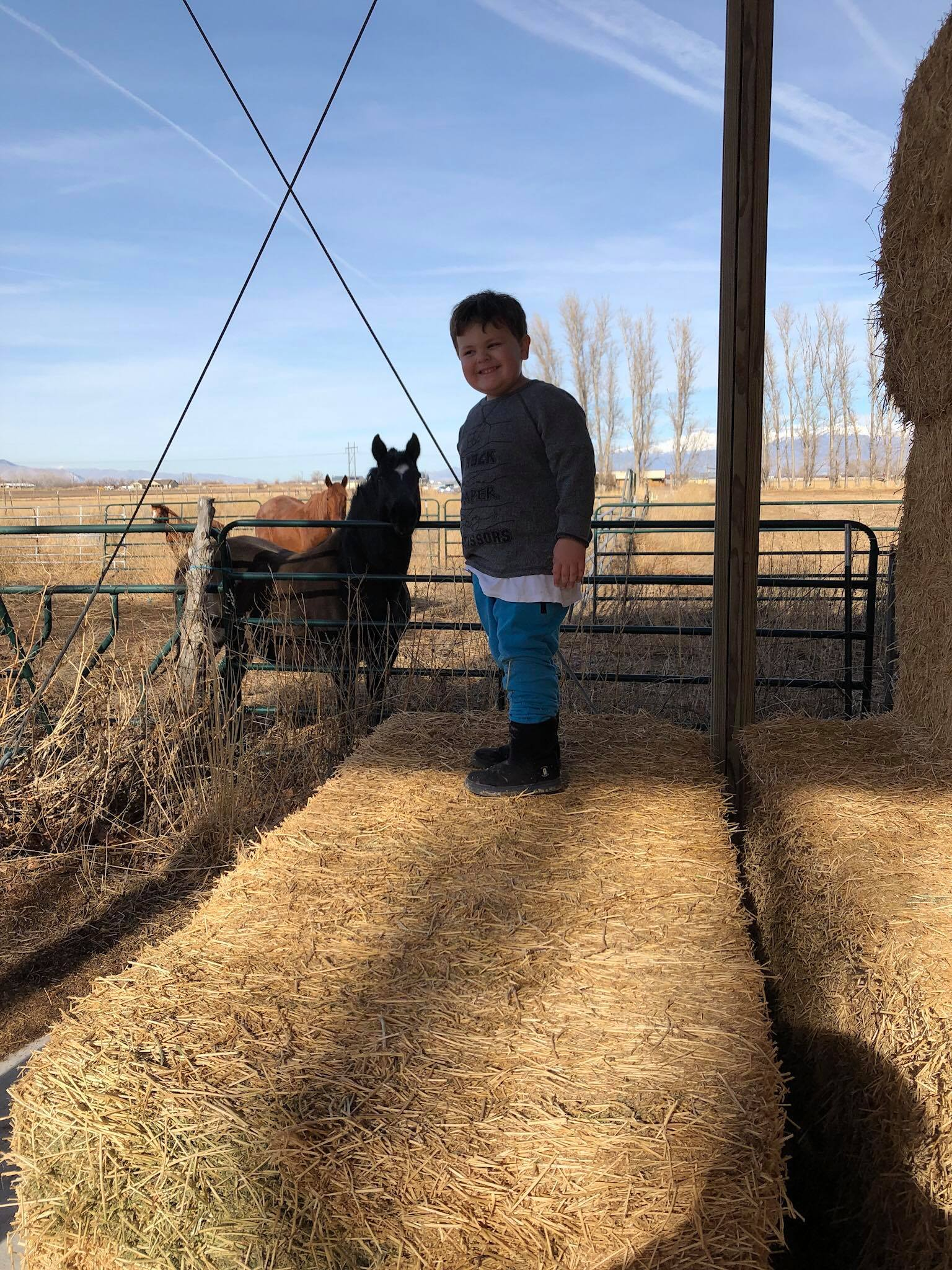 S, 5 years old, standing on top of a hay bale while horses look on in the background