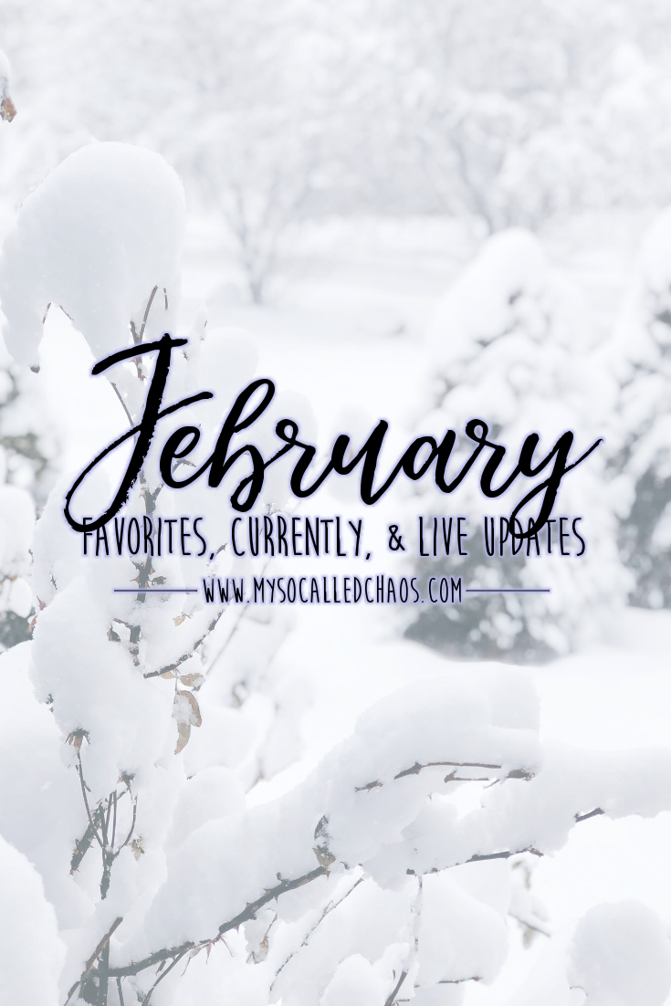 Pinnable image for blog post: February Favorites, Currently, & Life Updates (Showing a snowcovered landscape)