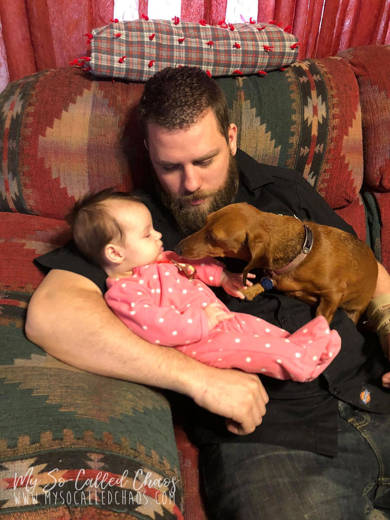 Baby girl being held by her uncle while a cute little Dachshund sniffs at her