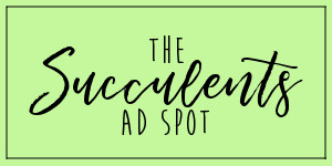 The Succulents Ad Spot