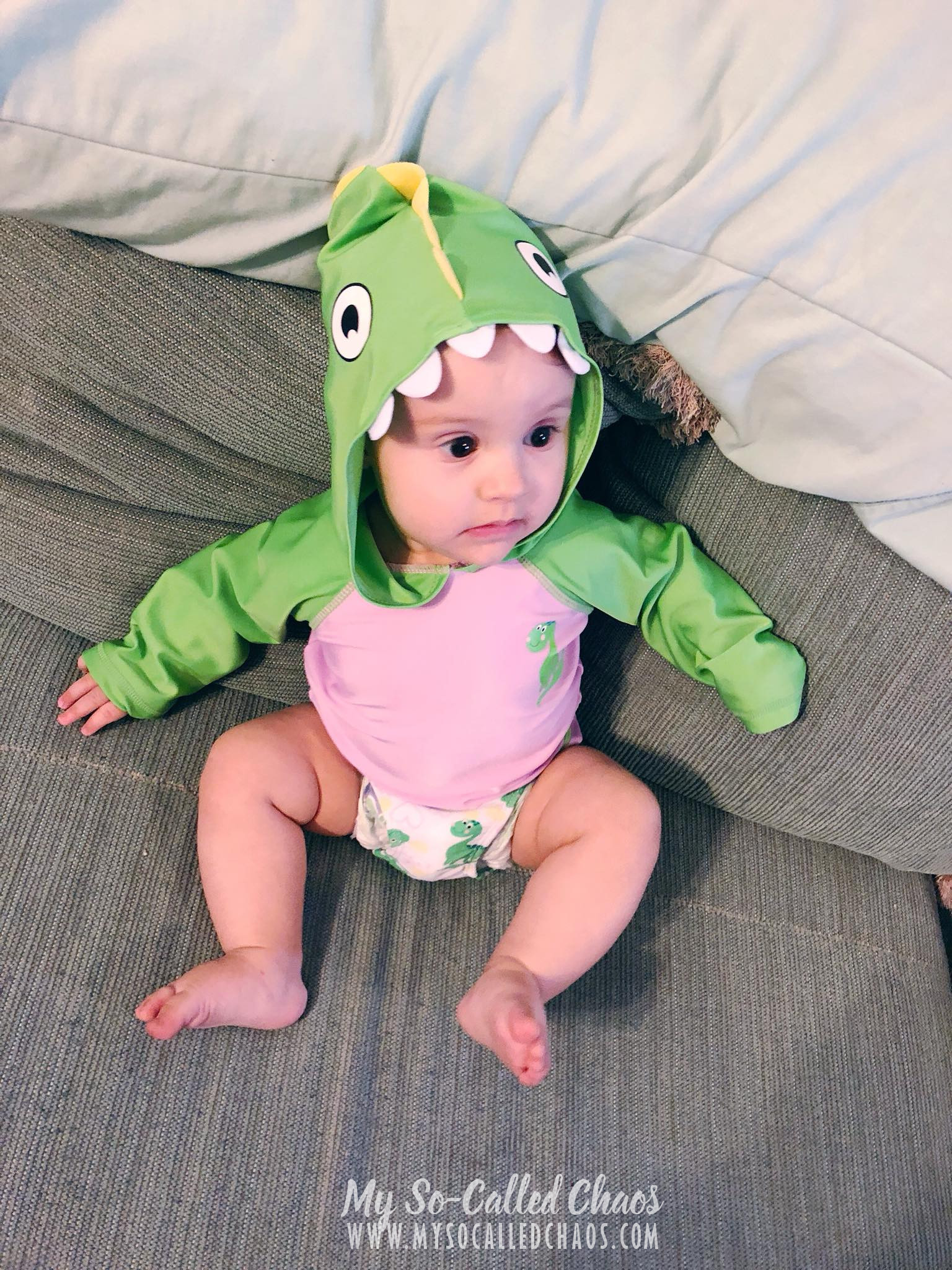 7 month old baby in a dinosaur swimsuit and rashguard.