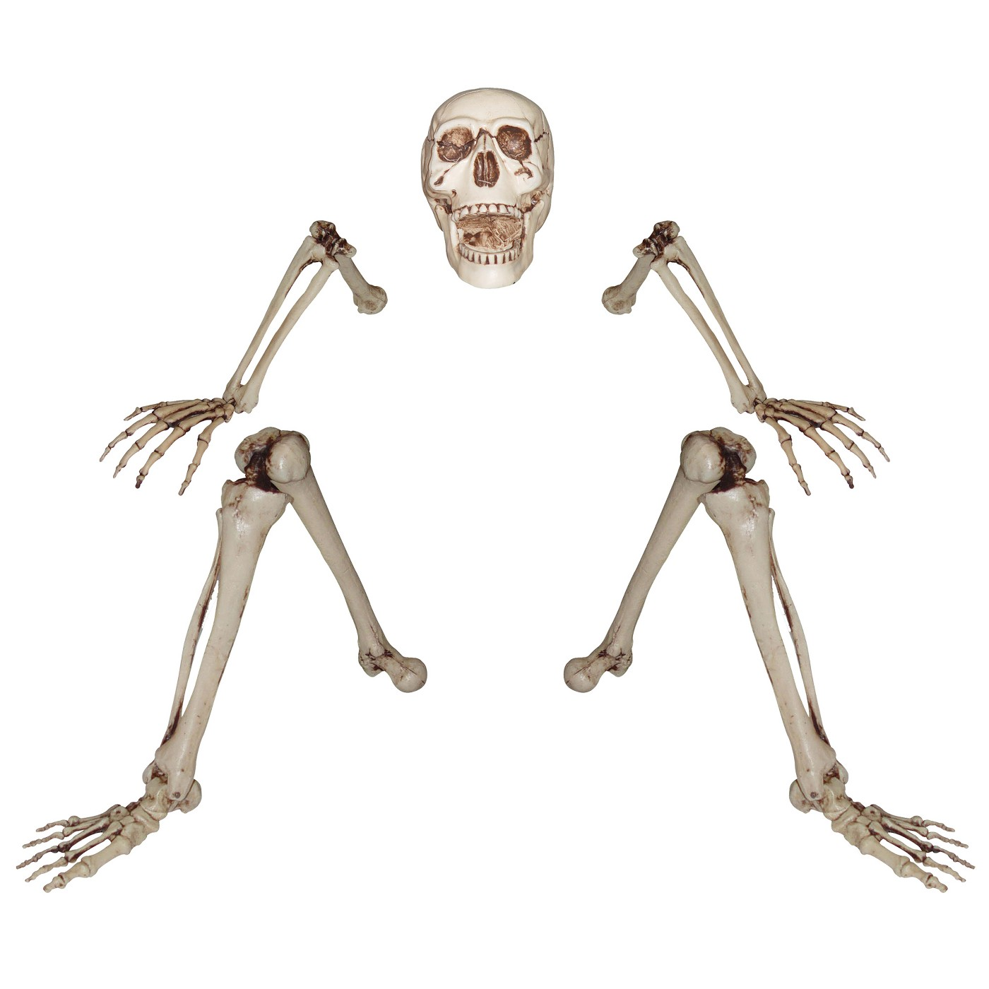 Halloween Ground Breaking Skeleton