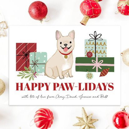 Custom Illustrated Pet Portrait Christmas Card by Kathryn Selbert
