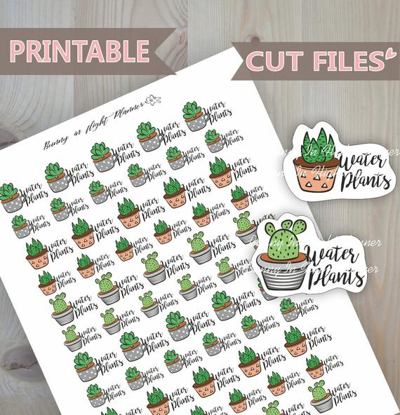 Water Plants Planner Stickers by Bunny In Flight Planner - printable planner stickers featuring cute plants and succulents with the reminder to water your plants